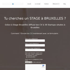 Stage Bruxelles